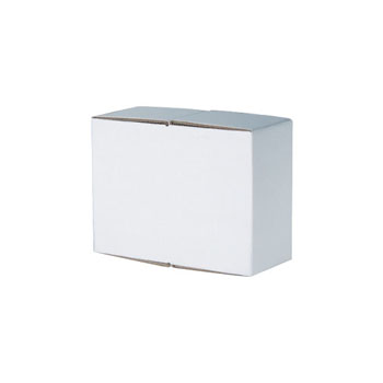 H/O-2STN - Set of 2 White Handout Carton