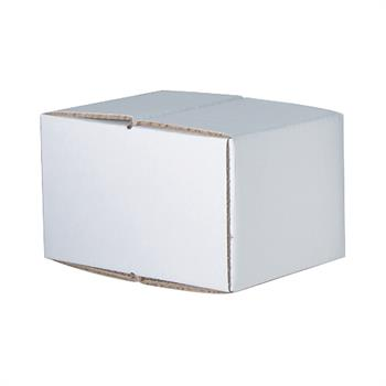 H/O-2M - Set of 2 White Handout Carton